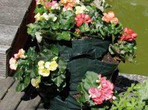 Aardbeien- en bloementoren