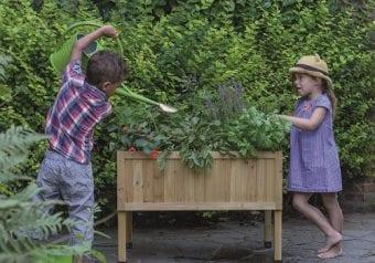 Kweekbak Easy grow table mini 78 x 58 x 56 cm